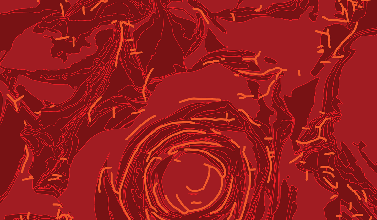 Abstractified Rose