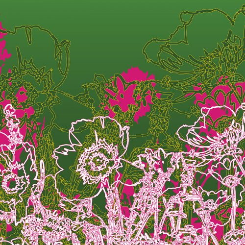 Abstractified Wildflower