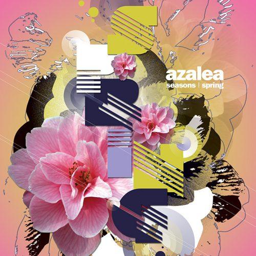 Abstractified Spring Azalea