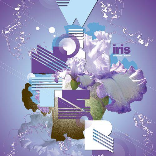 Abstractified Winter Iris